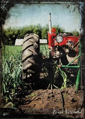 Sundog-Tractor