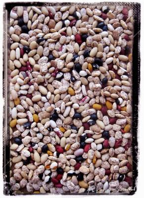 Beans-Dried