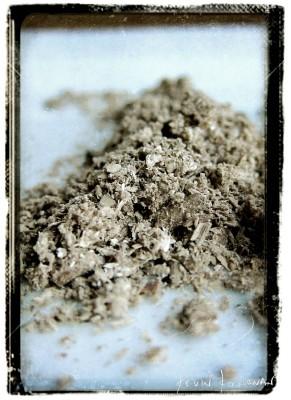 Shaggy-Parasol-Powder