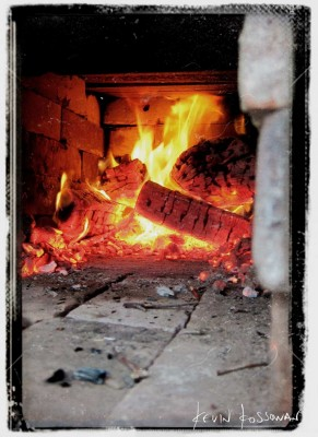T2---Coals