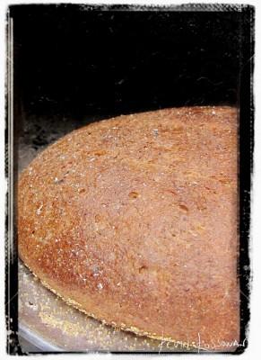 rye---loaf-closeup