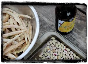 Dry Beans - Shelling