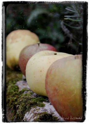 Normandy Apples