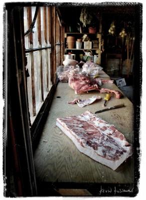 Pig-Day-2